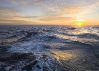 Как люди выживали в океане?