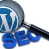 Работа с плагином All in One SEO Pack в WordPress