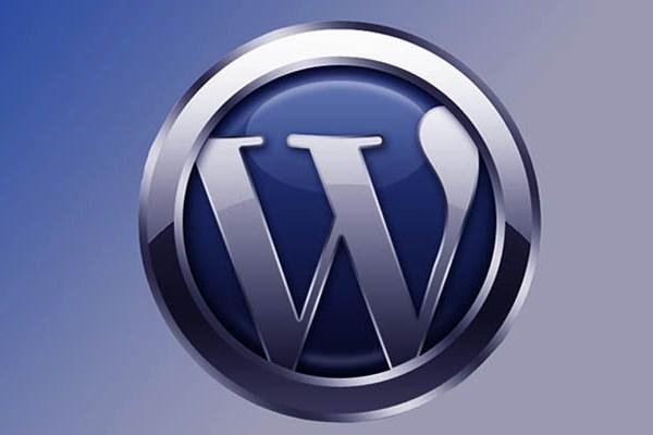 Использование меток WordPress